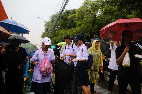Nguoi Thai doi mua cho vieng Quoc vuong Bhumibol - Anh 8