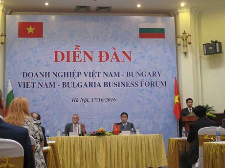Doanh nghiep Viet Nam va Bulgaria san sang cho co hoi hop tac moi - Anh 1