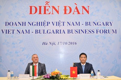 Tang cuong ket noi voi doanh nghiep Bulgaria - Anh 1