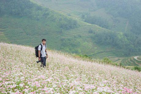 Ngam hoa tam giac mach no som o Bac Ha, Lao Cai - Anh 9