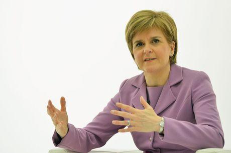 Scotland de ngo kha nang trung cau y dan lan 2 - Anh 1
