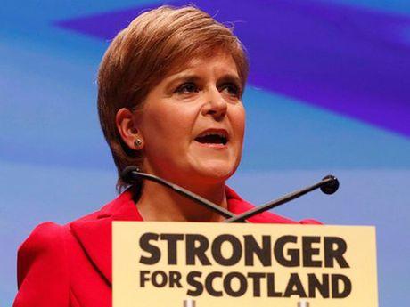 Scotland se tien hanh trung cau dan y roi Anh... - Anh 1