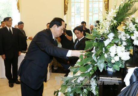 Chu tich nuoc vieng Nha Vua Thai Lan Bhumibol Adulyadej - Anh 2