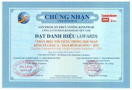 Kingphar Viet Nam: Thuong hieu uy tin, noi tieng Chau A - Thai Binh Duong trong hoi nhap - Anh 2