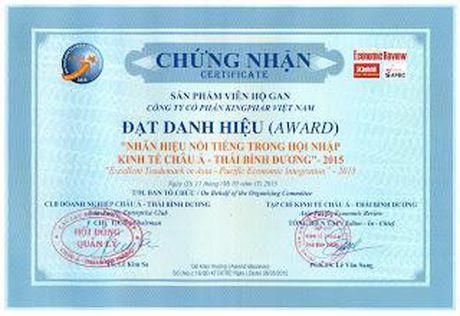 Kingphar Viet Nam: Thuong hieu uy tin, noi tieng Chau A - Thai Binh Duong trong hoi nhap - Anh 5