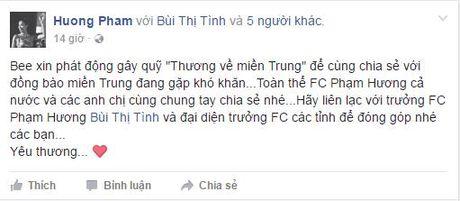 Sao Viet va nhung tam long 'thuong ve mien Trung' - Anh 4