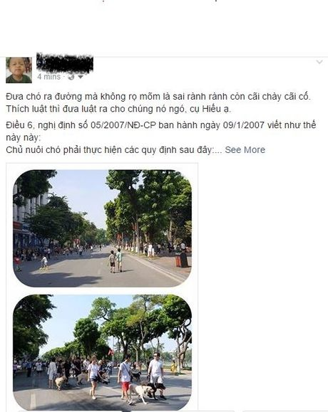 Phan no voi kieu 'khoe cho' khong ro mom o pho di bo Ho Guom - Anh 3