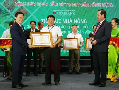 Thao go nhung van de cap bach ve nong nghiep, nong dan, nong thon - Anh 2