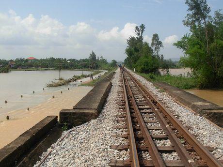 Quang Binh: An hoa khi vuot lu tren ngam Song Ngang - Anh 2