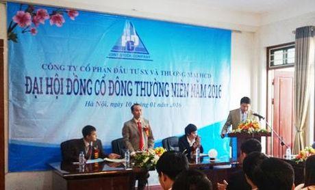 Phat Thuong mai HCD 85 trieu dong vi khai man tren Ban cao bach dang ky niem yet - Anh 1