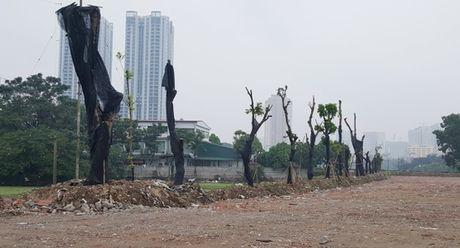 Khong de tai lan chiem dat nong nghiep o phuong Phuc La - Anh 2