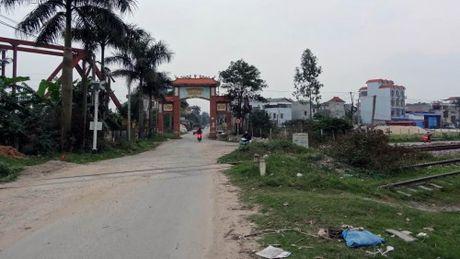 Kim No, Dong Anh: Phat trien san xuat ket hop thuong mai dich vu - Anh 1