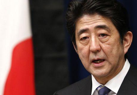 Thu tuong Shinzo Abe gui le vat den den Yasukuni - Anh 1