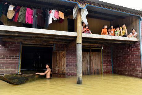 Cuoc song tren mai nha o ron lu Quang Binh - Anh 18