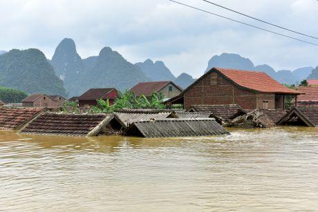Cuoc song tren mai nha o ron lu Quang Binh - Anh 1