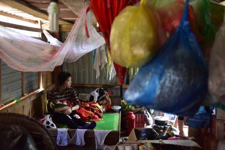Cuoc song tren mai nha o ron lu Quang Binh - Anh 8