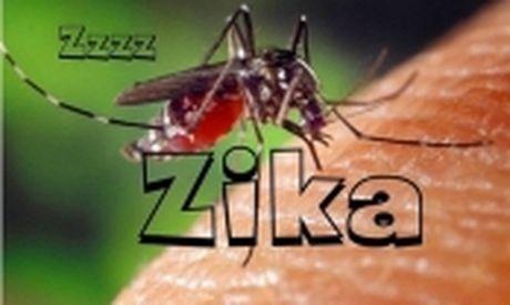 Viet Nam phat hien 1 tre mac chung dau nho, nang canh bao Zika - Anh 2