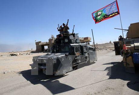 IOM canh bao IS su dung dan thuong tai Mosul lam 'la chan song' - Anh 1