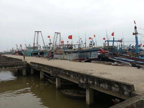 Thanh Hoa: Hon 7.000 tau thuyen vao noi tranh tru bao - Anh 1