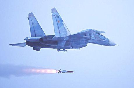 MiG-29 Syria mang ten lua R-77, My-Israel khong dam lam lieu? - Anh 6