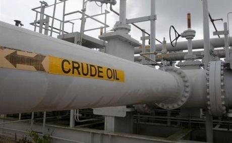 Gia dau giam khi thi truong cho hanh dong cua OPEC - Anh 1
