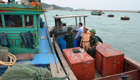 Quang Ninh: Cam bien tu 8h ngay 18-10, van dong tau thuyen ve noi tranh tru bao - Anh 6