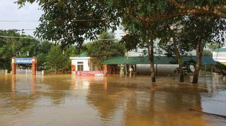 De phong bao so 7, Ha Noi len phuong an dam bao an toan cho hoc sinh - Anh 1