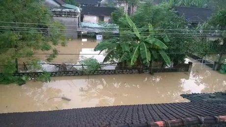 Nghe An: Hang chuc xa van dang ngap trong nuoc lu - Anh 2