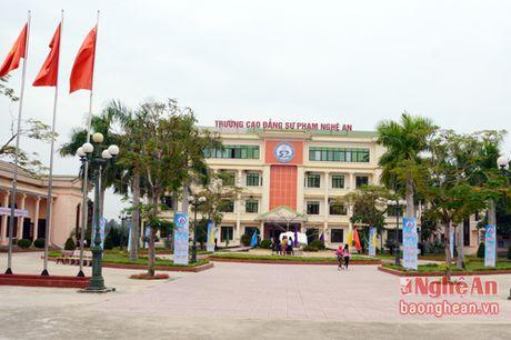 PGS.TS Luu Tien Hung giu chuc hieu truong Truong Cao dang Su pham Nghe An - Anh 2
