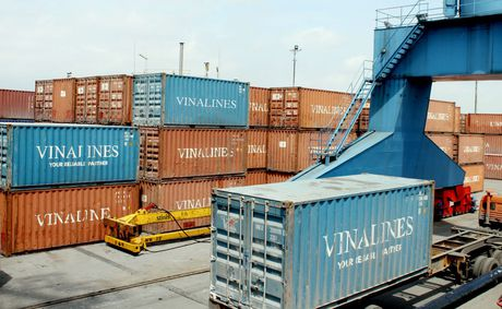 Container Vinalines moi thau quoc te 800 vo container cac loai - Anh 1