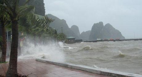 Tin bao so 7 moi nhat: Quang Ninh - Hai Phong hung mua lon - Anh 1