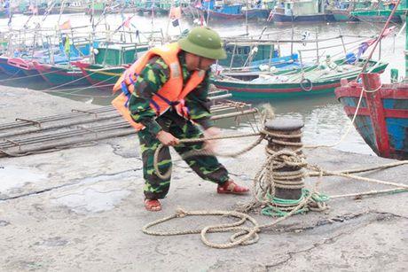 Quang Ninh – Hai Phong: Dan tran chong bao so 7 - Anh 4