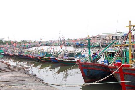 Quang Ninh – Hai Phong: Dan tran chong bao so 7 - Anh 5