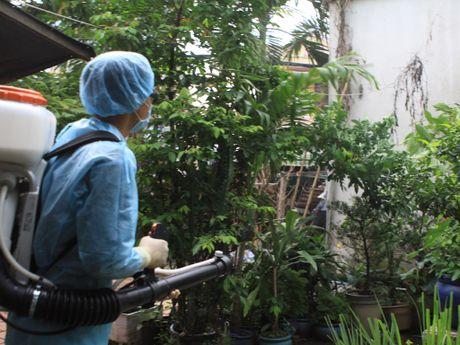 Lanh dao TP.HCM kiem tra dot xuat cong tac phong chong Zika - Anh 1