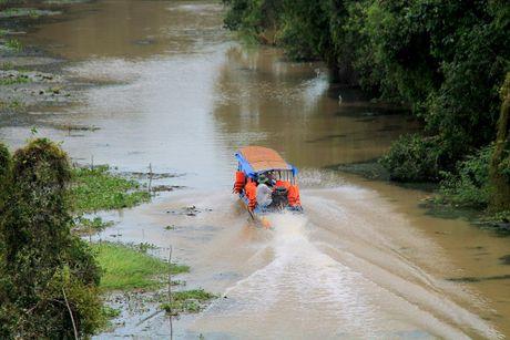 Con duong xuyen rung tram dep nhat Viet Nam - Anh 1