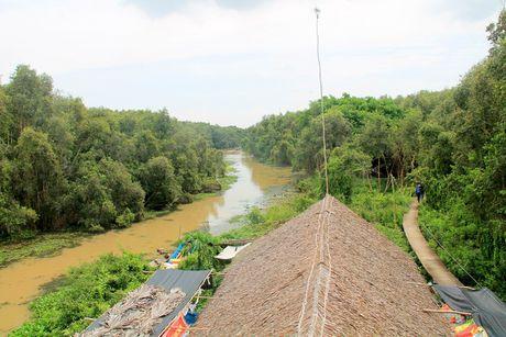 Con duong xuyen rung tram dep nhat Viet Nam - Anh 2