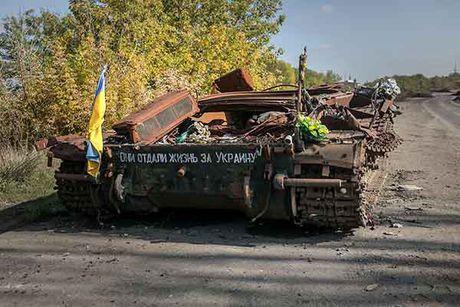 Can canh 'quan tinh nguyen' Ukraine ngoai chien tuyen - Anh 2