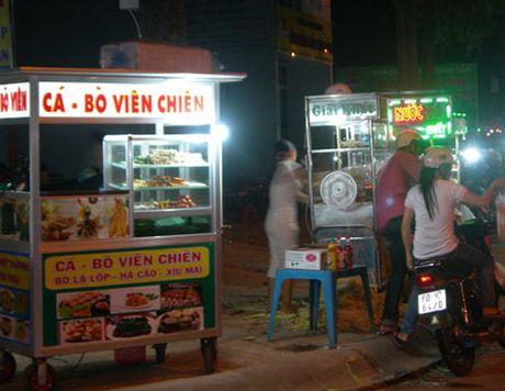 Mon vien chien thu hut nguoi dan TP.Ho Chi Minh - Anh 1