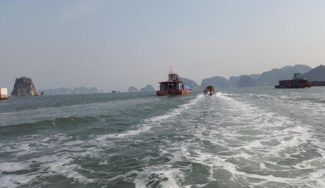 Pho Thu tuong Trinh Dinh Dung chi dao cong tac phong, chong bao tai Quang Ninh - Anh 2