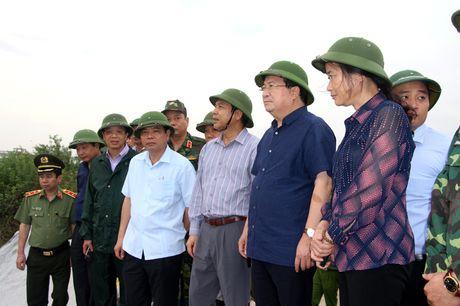 Pho Thu tuong Trinh Dinh Dung chi dao cong tac phong, chong bao tai Quang Ninh - Anh 5