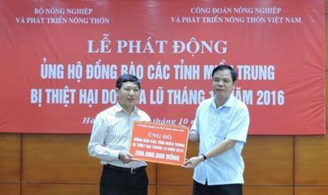 Phat dong quyen gop ung ho nhan dan mien Trung bi lu lut - Anh 1