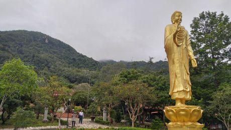 Dua thi the 3 phi cong tu nan trong vu may bay roi ve TP.HCM - Anh 5