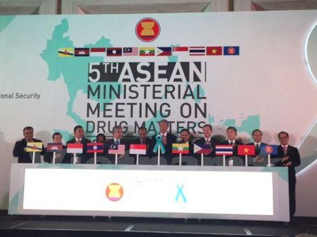 ASEAN hinh thanh co che hop tac chong buon ban va su dung ma tuy - Anh 1