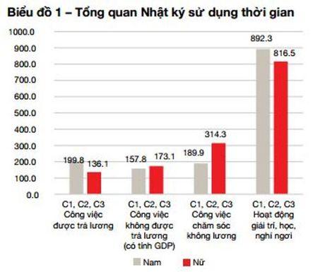 Phu nu Viet Nam dong gop 110 trieu gio lam viec khong luong moi ngay - Anh 2