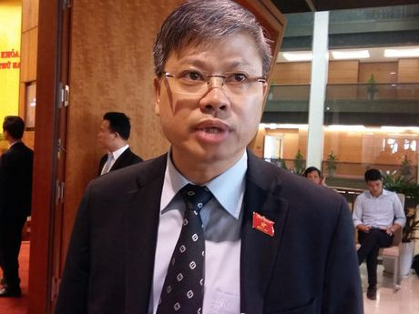 Dai bieu Quoc hoi: Vinastas cong bo mau nuoc mam la hanh vi khong dung - Anh 1