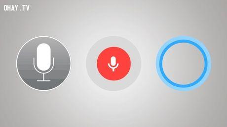 7 thu ban khong bao gio giau duoc Google - Anh 4
