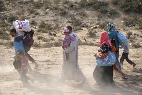 Thuong dan Iraq lu luot chay khoi thanh pho Mosul - Anh 5