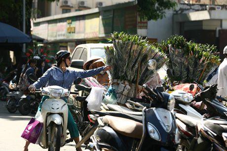 Quy ong tat bat mua hoa mung ngay Phu nu Viet Nam 20/10 - Anh 6