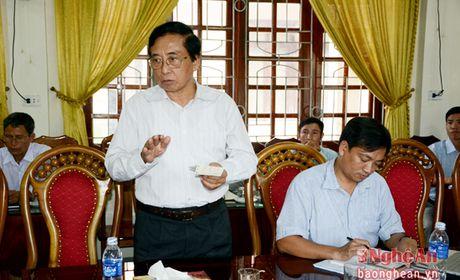 Tim giai phap phat trien nguyen lieu go tai huyen Que Phong - Anh 3