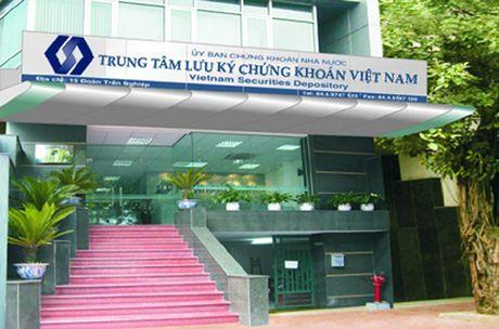 Trung tam Luu ky chung khoan: Nua nam dat 64% ke hoach loi nhuan - Anh 1